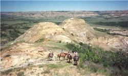 Badlands Trail Rides and Eastview Campgrounds